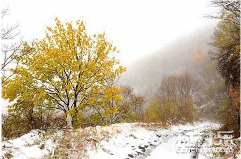 近日北方大部降雪 自我保护八个提醒